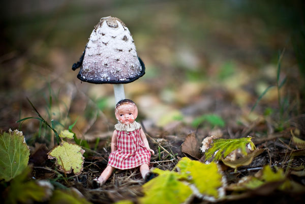 Doll-portrait-under-a-toadstool
