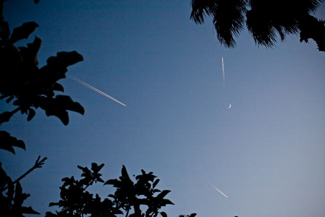 The-crescent-moon-three-aeroplanes-leafy-apple-trees-in-the-Blue-hour