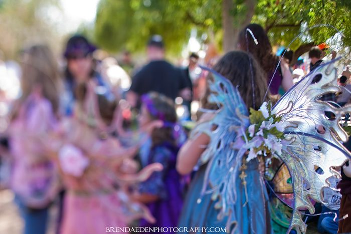 BlueRenaissanceFairy ARIZONARENAISSANCEWEDDING copyright