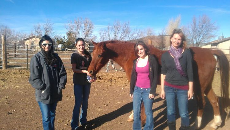 My cousins and their horse
