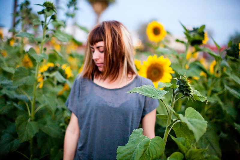 Valley-of-the-Sunflowers-small-size14