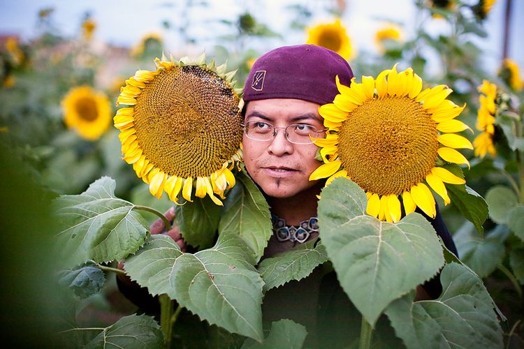 Sunflowers_FacebookWebSize_RMarioE